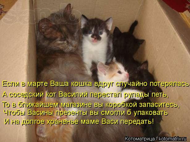Котоматрица: Если в марте Ваша кошка вдруг случайно потерялась, А соседский кот Василий перестал рулады петь, То в ближайшем магазине вы коробкой запаси