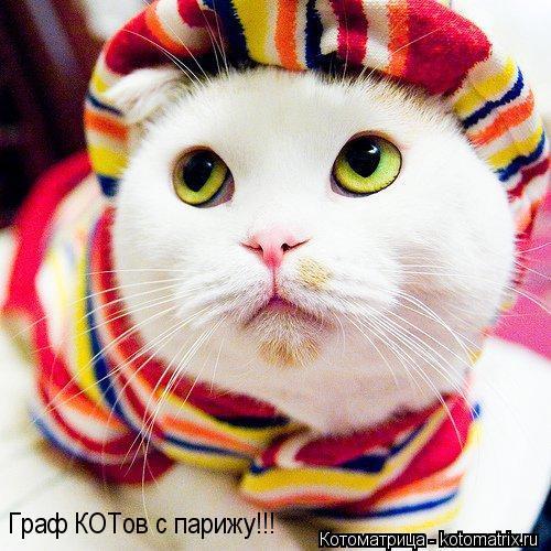 Котоматрица: Граф КОТов с парижу!!!