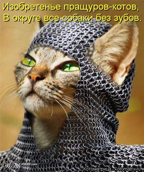 Котоматрица: Изобретенье пращуров-котов, В округе все собаки без зубов.