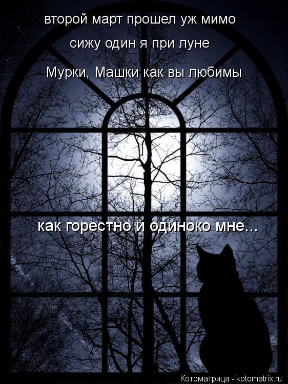 Котоматрица: второй март прошел уж мимо сижу один я при луне Мурки, Машки как вы любимы как горестно и одиноко мне...