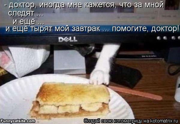 Котоматрица: - доктор, иногда мне кажется, что за мной следят ... и ещё ... и ещё тырят мой завтрак ... помогите, доктор!