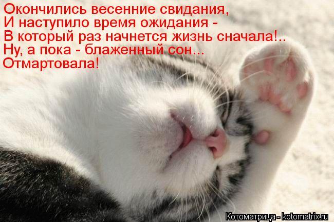 Котоматрица: Окончились весенние свидания,  И наступило время ожидания -  В который раз начнется жизнь сначала!.. Ну, а пока - блаженный сон... Отмартовала!
