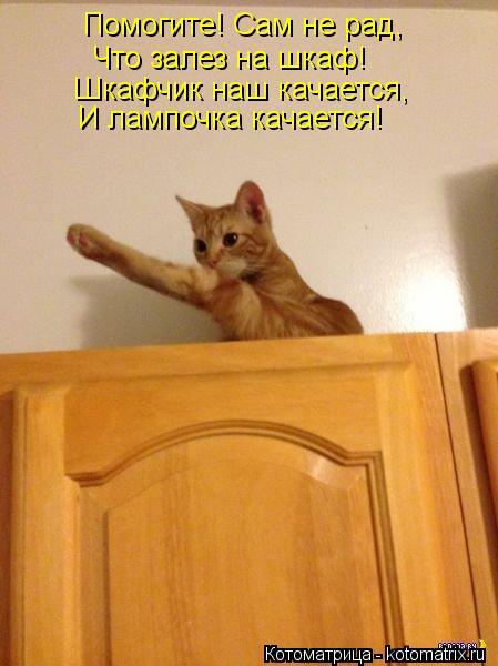 Котоматрица: Помогите! Сам не рад, Что залез на шкаф! Шкафчик наш качается, И лампочка качается!