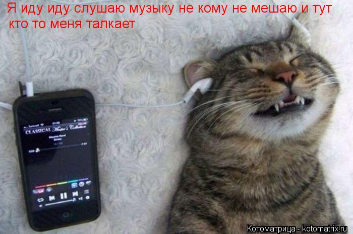 Котоматрица: Я иду иду слушаю музыку не кому не мешаю и тут  кто то меня талкает