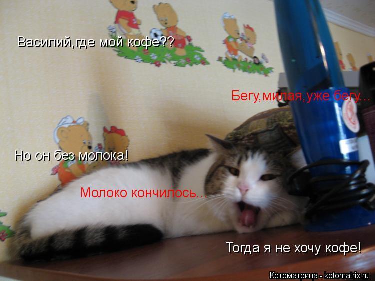 Котоматрица: Василий,где мой кофе?? Бегу,милая,уже бегу... Но он без молока! Молоко кончилось... Тогда я не хочу кофе!