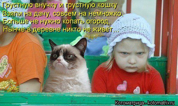 Котоматрица: Грустную внучку и грустную кошку Взяли на дачу, совсем на немножко. Больше не нужно копать огород, Нынче в деревне никто не живёт…