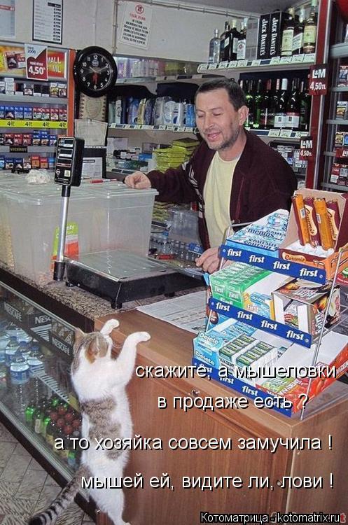 Котоматрица: скажите, а мышеловки  в продаже есть ? а то хозяйка совсем замучила ! мышей ей, видите ли, лови !