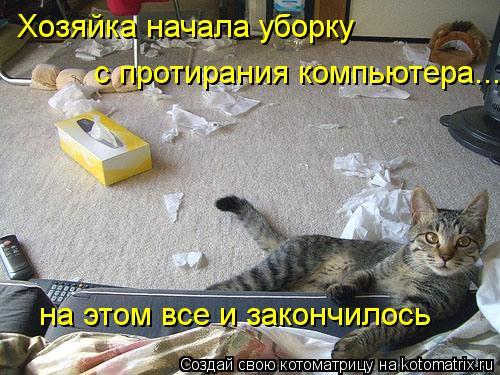 Котоматрица: Хозяйка начала уборку  с протирания компьютера... на этом все и закончилось