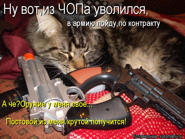 Котоматрица: Ну вот,из ЧОПа уволился, в армию пойду,по контракту А че?Оружие у меня свое... Постовой из меня крутой получится!