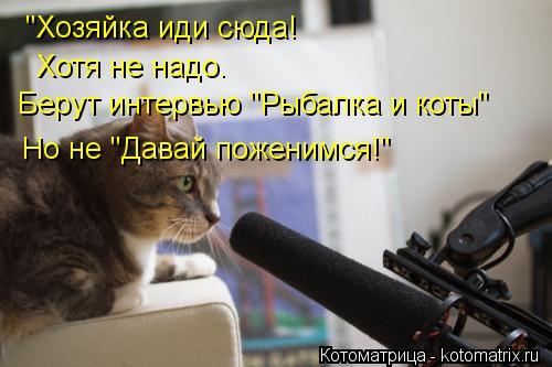 """Котоматрица: """"Хозяйка иди сюда! Хотя не надо. Берут интервью """"Рыбалка и коты"""" Но не """"Давай поженимся!"""""""