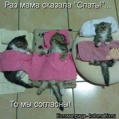 """Котоматрица: Раз мама сказала """"Спать!""""... То мы согласны!"""
