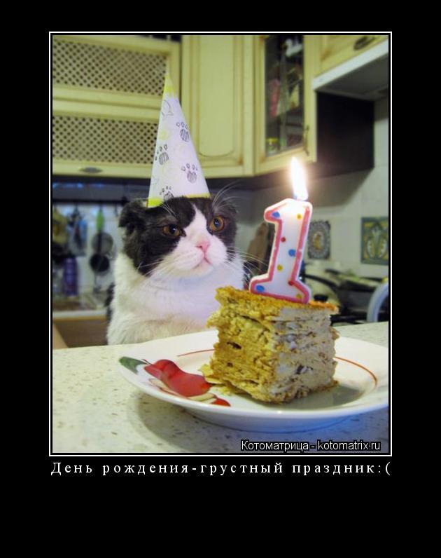 Котоматрица: День рождения-грустный праздник:(