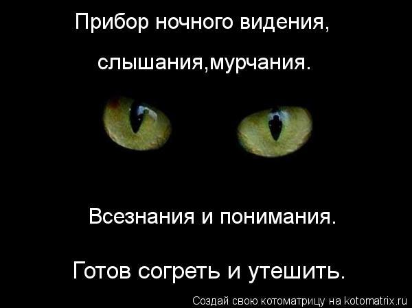 Котоматрица: Прибор ночного видения, слышания,мурчания. Всезнания и понимания. Готов согреть и утешить.