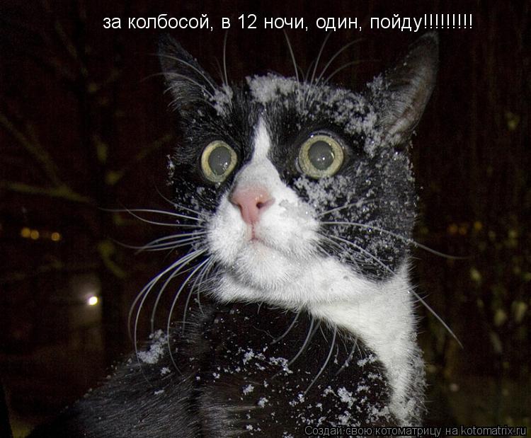 Котоматрица: за колбосой, в 12 ночи, один, пойду!!!!!!!!!