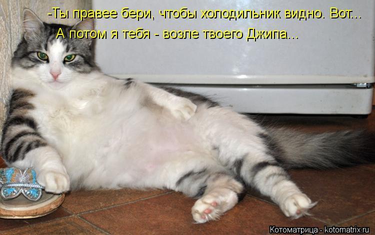 Котоматрица: -Ты правее бери, чтобы холодильник видно. Вот... А потом я тебя - возле твоего Джипа...