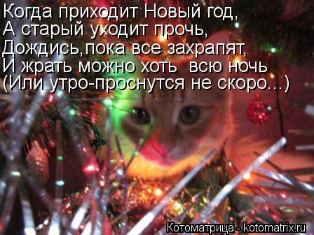 Котоматрица: Когда приходит Новый год, А старый уходит прочь, Дождись,пока все захрапят, И жрать можно хоть  всю ночь (Или утро-проснутся не скоро...)