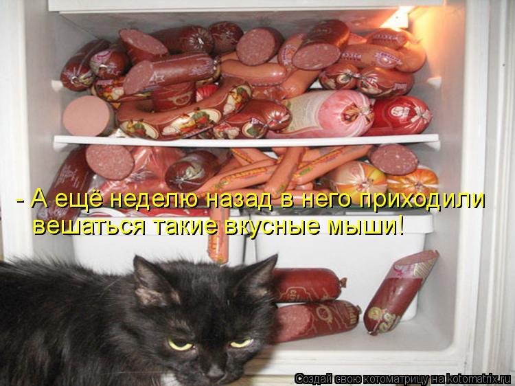 Котоматрица: - А ещё неделю назад в него приходили вешаться такие вкусные мыши!