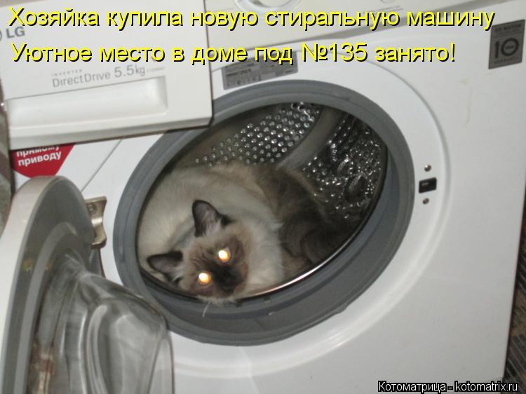 Котоматрица: Хозяйка купила новую стиральную машину Уютное место в доме под №135 занято!
