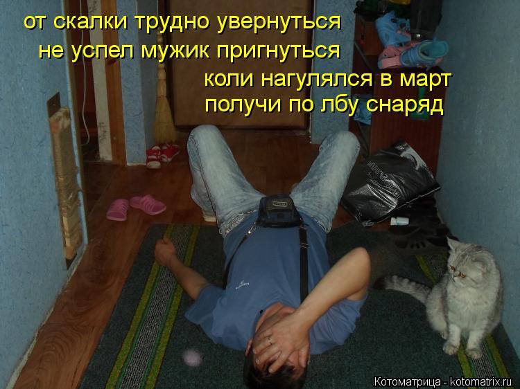 Котоматрица: от скалки трудно увернуться не успел мужик пригнуться получи по лбу снаряд коли нагулялся в март