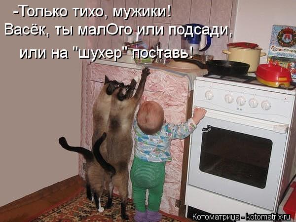 """Котоматрица: -Только тихо, мужики! Васёк, ты малОго или подсади, или на """"шухер"""" поставь!"""