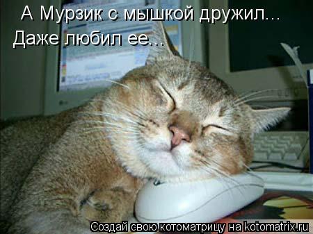 Котоматрица: А Мурзик с мышкой дружил... Даже любил ее...