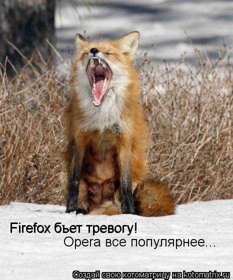 Котоматрица: Firefox бьет тревогу! Firefox бъет тревогу! Opera все популярнее...