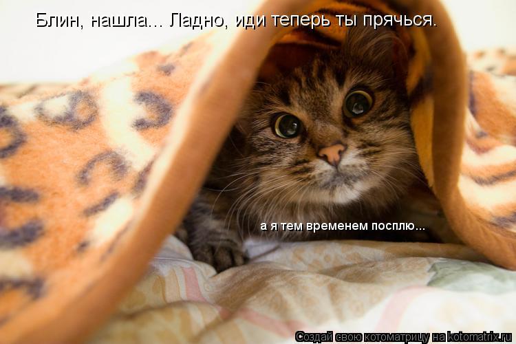 Котоматрица: Блин, нашла... Ладно, иди теперь ты прячься. а я тем временем посплю...