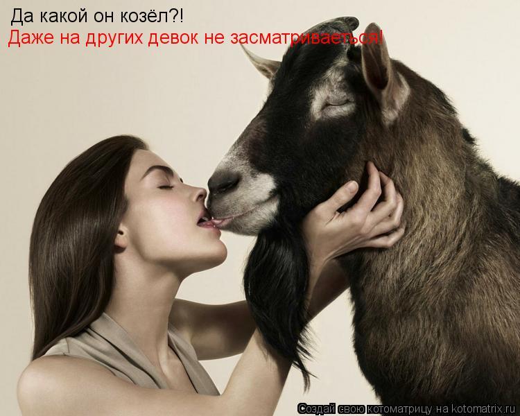 Котоматрица: Да какой он козёл?! Даже на других девок не засматриваеться!