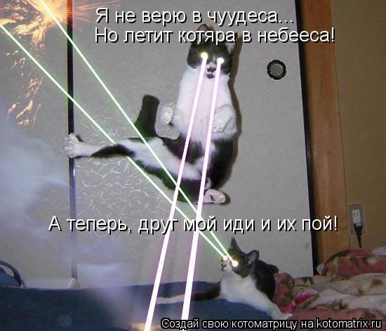 Котоматрица: Я не верю в чуудеса... Но летит котяра в небееса! А теперь, друг мой иди и их пой!
