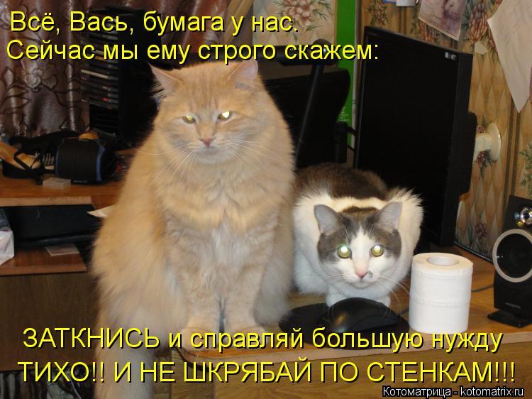 Котоматрица: Всё, Вась, бумага у нас.  Сейчас мы ему строго скажем: ЗАТКНИСЬ и справляй большую нужду  ТИХО!! И НЕ ШКРЯБАЙ ПО СТЕНКАМ!!!