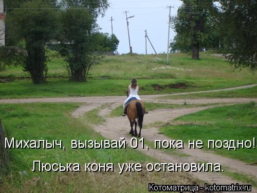 Котоматрица: Михалыч, вызывай 01, пока не поздно! Люська коня уже остановила.
