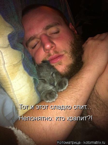 Котоматрица: Тот и этот сладко спит... Непонятно: кто храпит?!