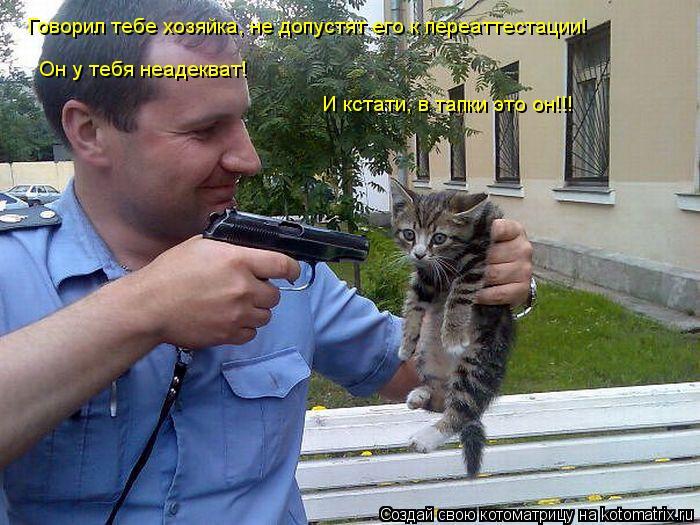 Котоматрица: Говорил тебе хозяйка, не допустят его к переаттестации! Он у тебя неадекват! И кстати, в тапки это он!!!