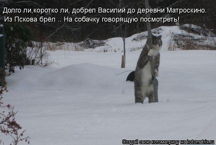 Котоматрица: Долго ли,коротко ли, добрел Василий до деревни Матроскино.  Из Пскова брёл .. На собачку говорящую посмотреть!