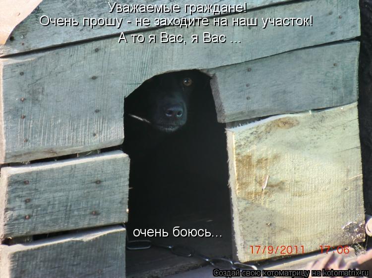http://kotomatrix.ru/images/lolz/2013/05/02/kotomatritsa_5-.jpg