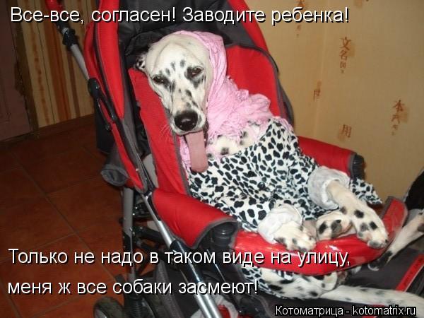 Котоматрица: Все-все, согласен! Заводите ребенка! Только не надо в таком виде на улицу, меня ж все собаки засмеют!