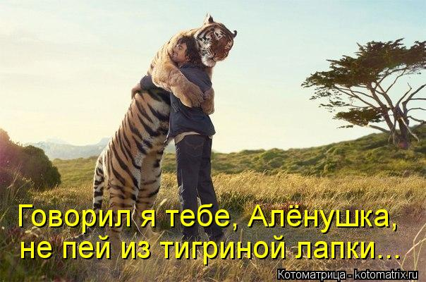 Котоматрица: Говорил я тебе, Алёнушка, не пей из тигриной лапки...