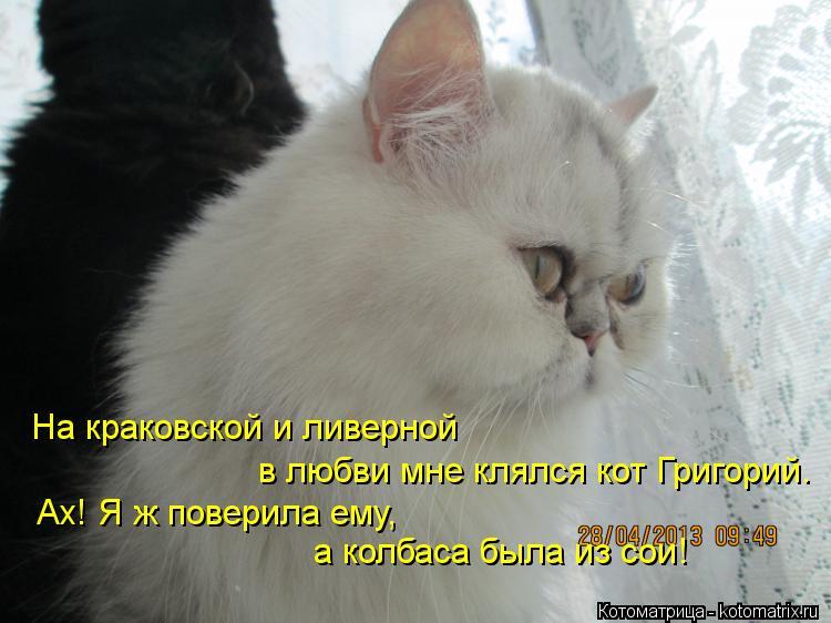 Котоматрица: На краковской и ливерной в любви мне клялся кот Григорий. Ах! Я ж поверила ему, а колбаса была из сои!