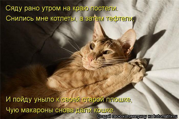 Котоматрица: Сяду рано утром на краю постели. Снились мне котлеты, а затем тефтели, И пойду уныло к своей старой плошке, Чую макароны снова дали кошке.