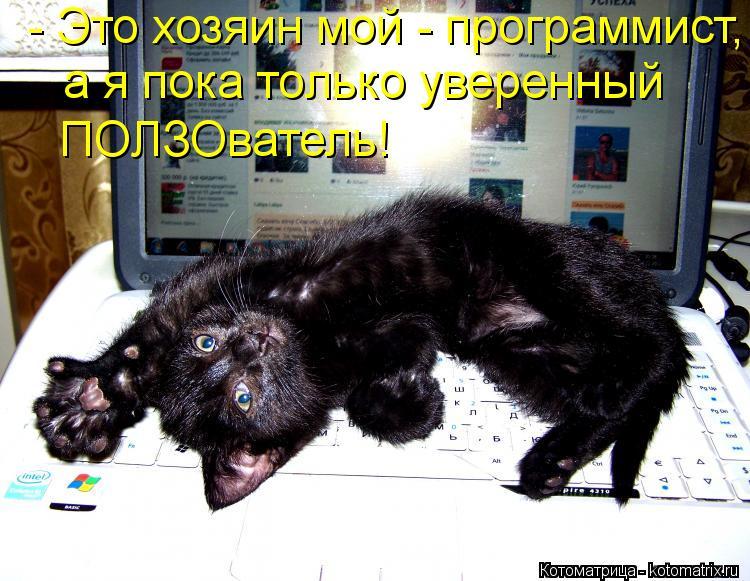 Котоматрица: - Это хозяин мой - программист, а я пока только уверенный  ПОЛЗОватель!
