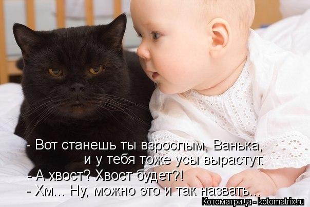 Котоматрица: - Вот станешь ты взрослым, Ванька, и у тебя тоже усы вырастут. - А хвост? Хвост будет?! - Хм... Ну, можно это и так назвать...
