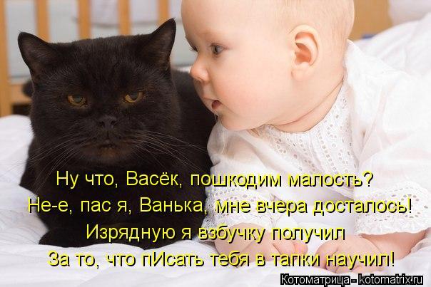Котоматрица: Ну что, Васёк, пошкодим малость? Не-е, пас я, Ванька, мне вчера досталось! Изрядную я взбучку получил За то, что пИсать тебя в тапки научил!