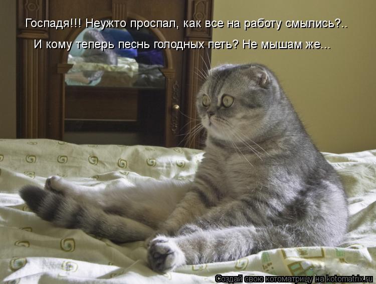 Котоматрица: Госпадя!!! Неужто проспал, как все на работу смылись?.. И кому теперь песнь голодных петь? Не мышам же...