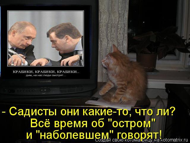"""Котоматрица: - Садисты они какие-то, что ли? Всё время об """"остром""""  и """"наболевшем"""" говорят!"""