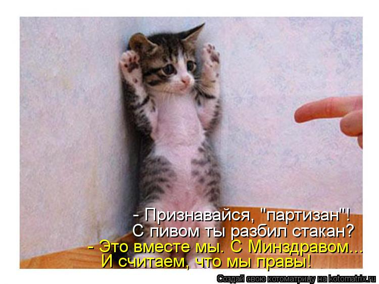 """Котоматрица: - Признавайся, """"партизан""""! С пивом ты разбил стакан? - Это вместе мы. С Минздравом... И считаем, что мы правы!"""