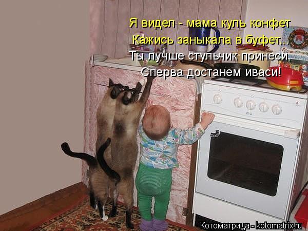 Котоматрица: Я видел - мама куль конфет Кажись заныкала в буфет... Ты лучше стульчик принеси, Сперва достанем иваси!
