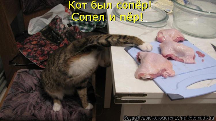 Котоматрица: Сопел и пёр! Кот был сопёр!