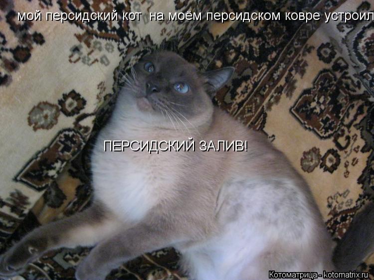 Секс на персидском ковре фото 11 фотография