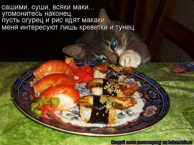 Котоматрица: сашими, суши, всяки маки... угомонитесь наконец.  пусть огурец и рис едят макаки. меня интересуют лишь креветки и тунец.