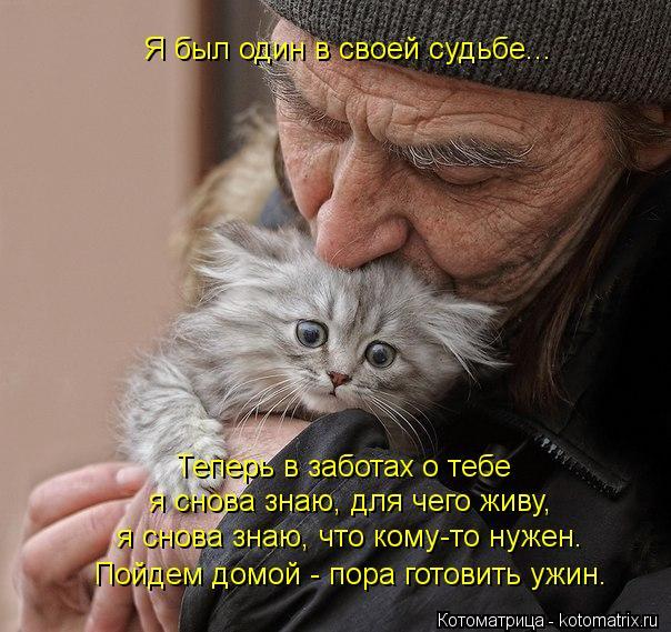 Котоматрица: Я был один в своей судьбе... Теперь в заботах о тебе я снова знаю, для чего живу, я снова знаю, что кому-то нужен. Пойдем домой - пора готовить уж